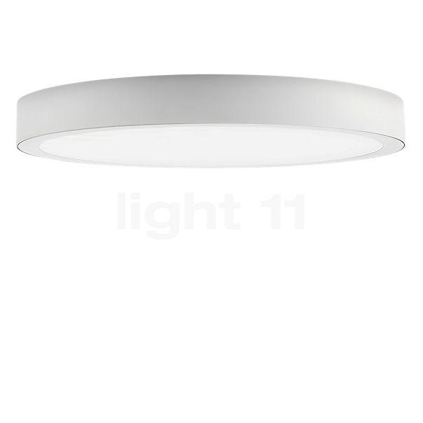 Panzeri Planet Ring Plafond-/Wandlamp LED