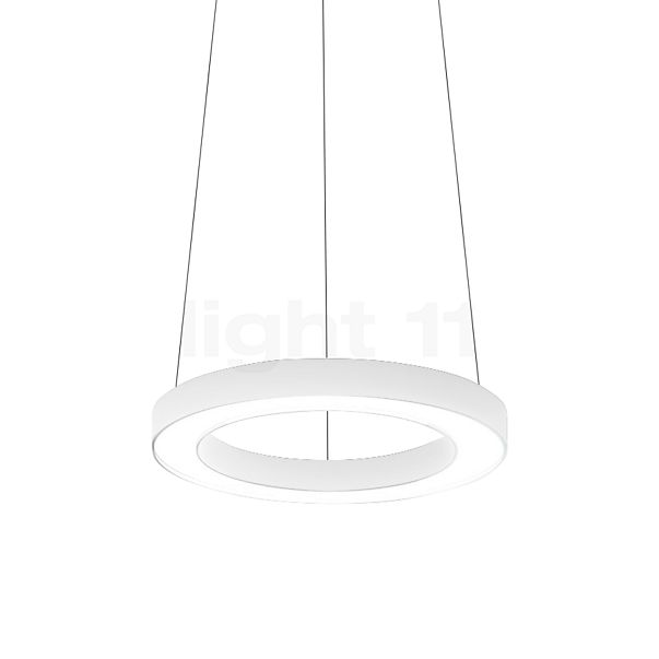 Panzeri Silver Ring Pendelleuchte LED