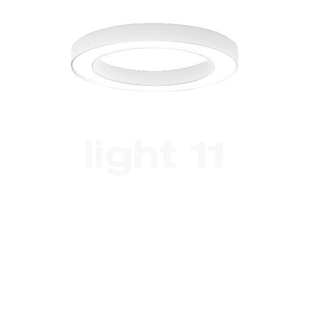 Panzeri Silver Ring, lámpara de techo LED