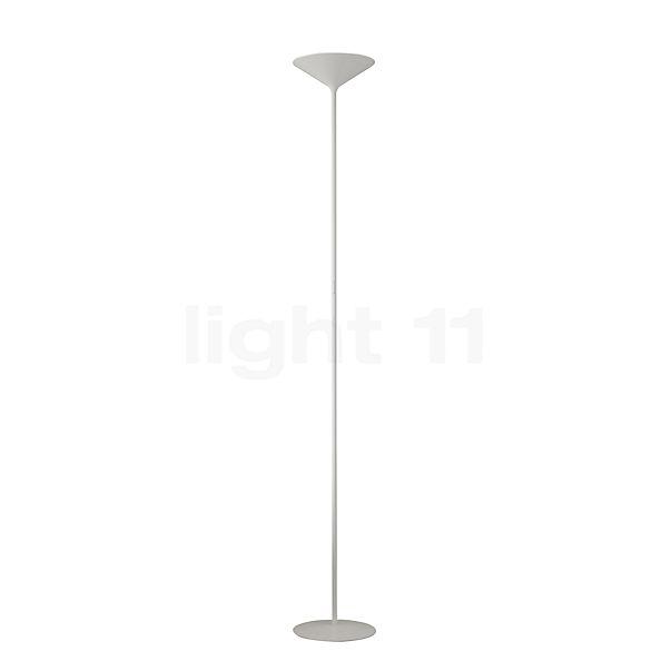Rotaliana Dry F1 LED