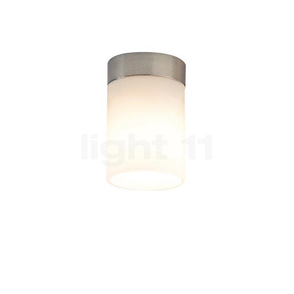 Top Light Dela Box Short Spot